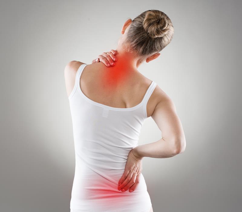 chiropractic services  Royal Oak, MI